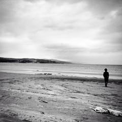 Beach/Landscape