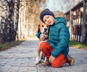 Wall Mural - Little boy with beagle on the autumn street