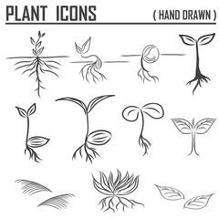 Plants icons