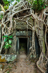 Fototapete - Ancient stone door and tree roots, Ta Prohm temple, Angkor