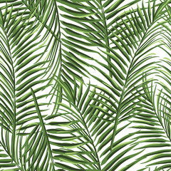 tropical palm leaves pattern