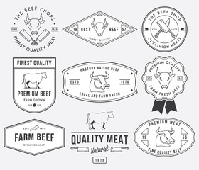 Quality beef meat 2