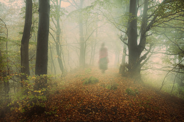 Dark mist in the forest. Ghost appears Wall mural