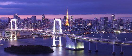 Wall Murals Bridges view of Tokyo Bay , Rainbow bridge and Tokyo Tower landmark