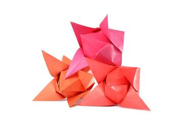 Origami tulip isolated over white background