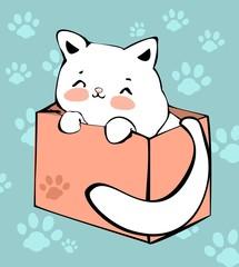 cute cat sits in a box.