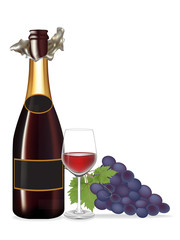 Grape and Bottle wine,Glass wine ,Vector illustration