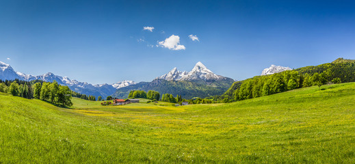 Wall Mural - Idyllic summer landscape in the Alps