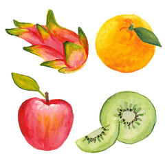 Apple, qiwi, orange and dragon fruit. Hand drawn