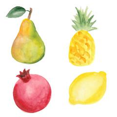 Pear, pinapple, pomegranate and lemon. Hand drawn