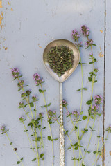Thyme sprigs with dried in a spoon on a rustic wood table.