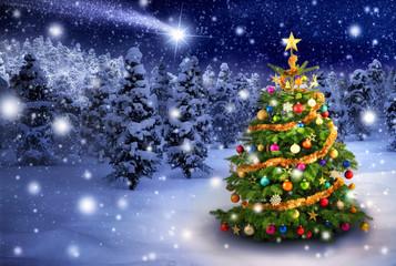 Wall Mural - Weihnachtsbaum in verschneiter Nacht
