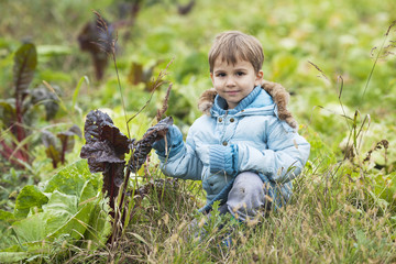 Young boy on a vegetable farm