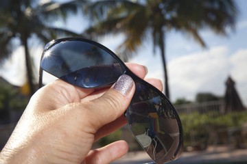 Palm Tree Sun Glasses
