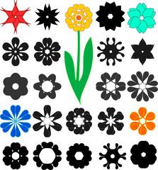 23 Flowers