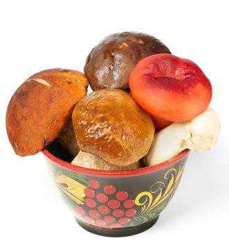 Pile of fresh mushrooms