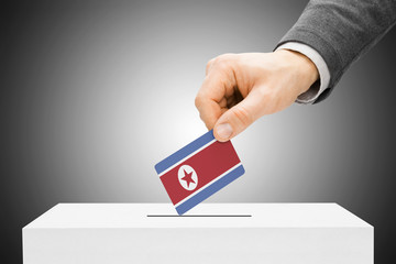 Male inserting flag into ballot box - North Korea