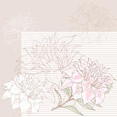 Dahlia background 3