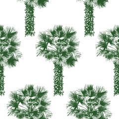 hand drawn palm tree seamless