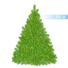 vector green color christmas tree