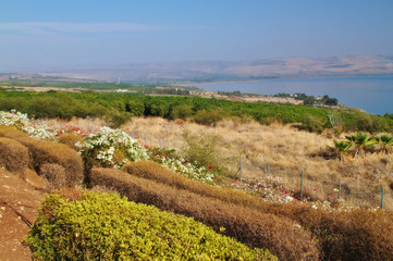 View of Galiliee sea / Kinneret