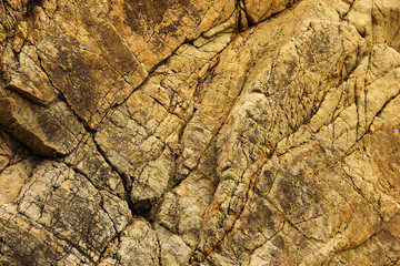 Texture of the yellow rock.