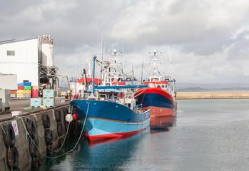 Retour de pêche au port du Rosmeur  à Douarnenez , Bretagne