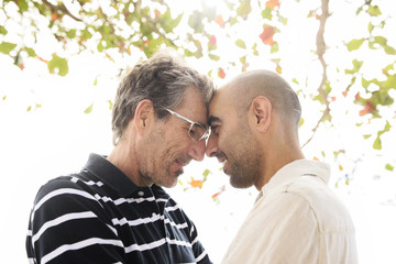 Romantic gay couple