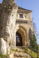 Fototapeta The ruins of the castle of the Fathers.Poland obraz