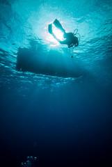 Underwater sunshine in Derawan, Kalimantan underwater