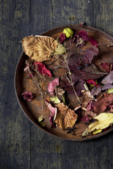 autumnal composition with colored dry leaves on vintage tray