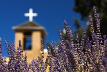 Lavendel vor der Francisco de Assis Kirche, Taos