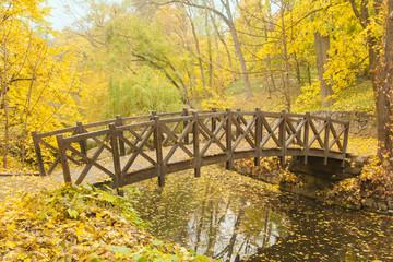 Wooden bridge in old park
