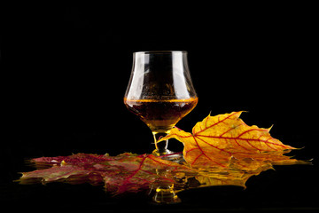 cognac and leaves