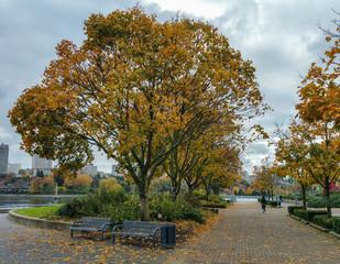 Autumn in Vancouver, BC, Canada