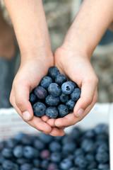 Blueberry Handful