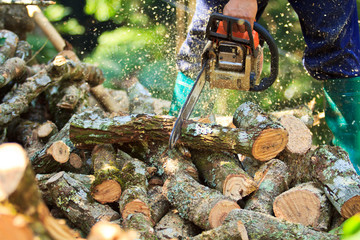Man is cutting firewood for home with a chainsaw