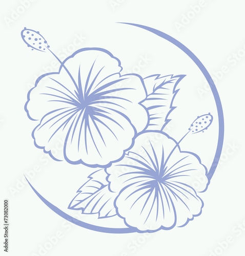 Hibiscus Flower Symbol Stock Image And Royalty Free Vector Files On