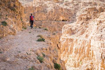 Fototapete - Woman tourist walking desert mountain above gorge canyon.