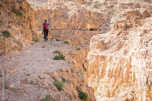 Wall mural Woman tourist walking desert mountain above gorge canyon.