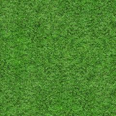 Grass Texture - Seamless
