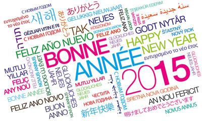 Bonne Année 2015 nuage de mots couleurs texte tag cloud