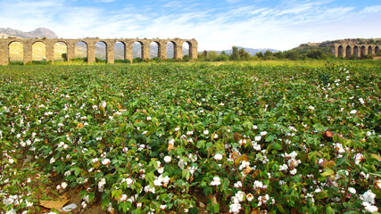 Aqueduct at Aspendos in Antalya, Turkey