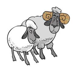 Funny vector cartoon sheep and ram