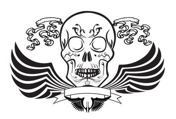 skulls art wings