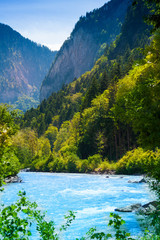 Wall Mural - Beautiful river in the forest near Alps