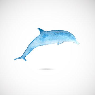 Watercolor dolphin
