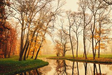 Autumn lake in the park - fototapety na wymiar