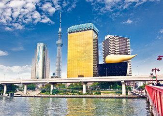 Fototapete - Tokyo, Japan skyline on the Sumida River.