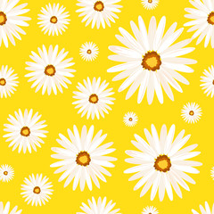 Spring seamless background with camomile flowers. Vector EPS10.